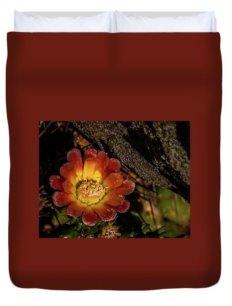 Cholla Duvet Cover by Martina Thompson
