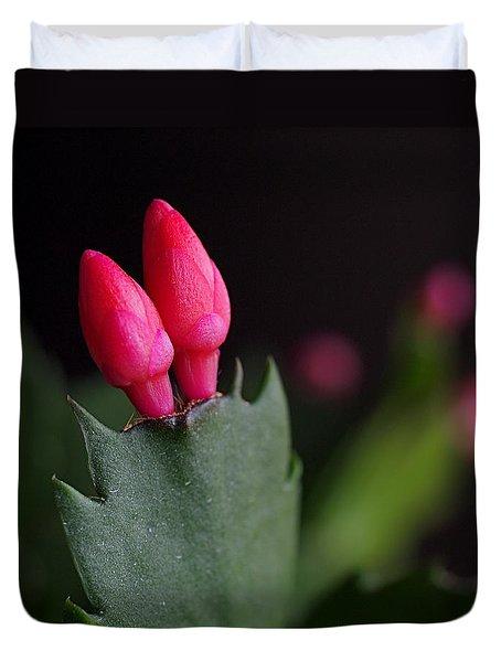 Christmas Cactus Double Joy Duvet Cover by Rona Black