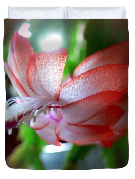 Christmas Cactus Duvet Cover by EricaMaxine  Price