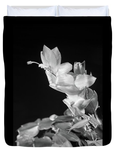 Christmas Cactus On Black Duvet Cover by Ed Cilley