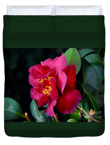 Duvet Cover featuring the photograph Christmas Camellia by Marie Hicks