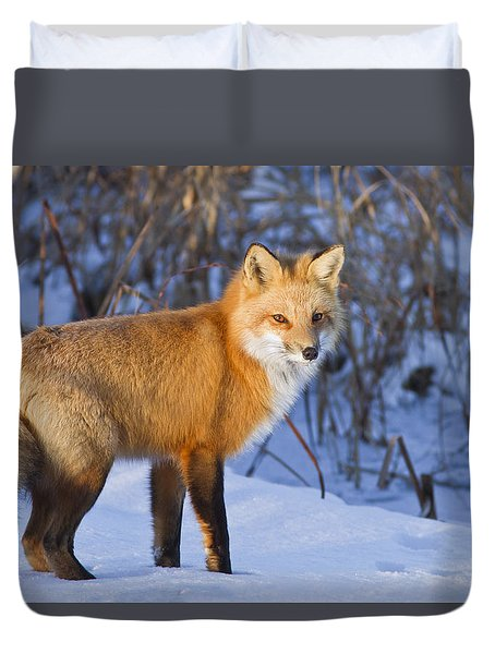 Christmas Fox Duvet Cover