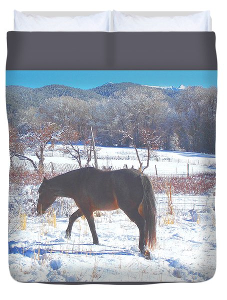 Christmas Roan El Valle I Duvet Cover by Anastasia Savage Ealy