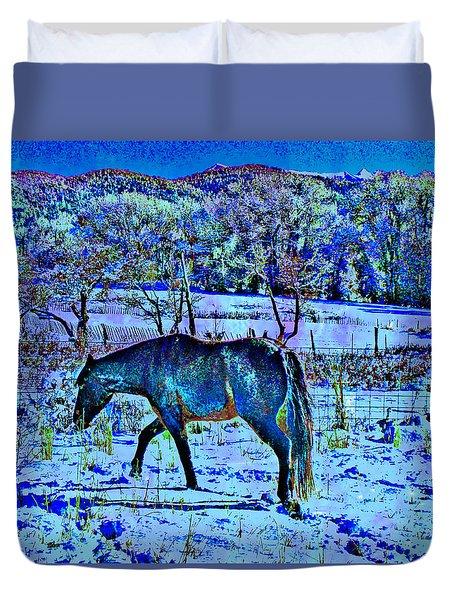 Christmas Roan El Valle IIi Duvet Cover by Anastasia Savage Ealy