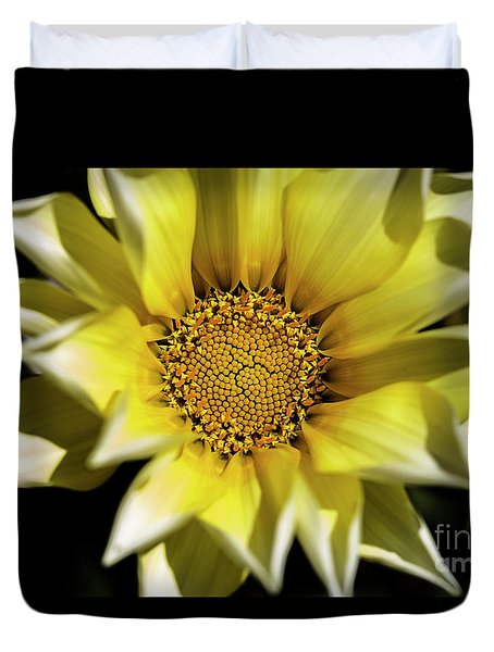 Duvet Cover featuring the photograph Chrysanthos by Linda Lees