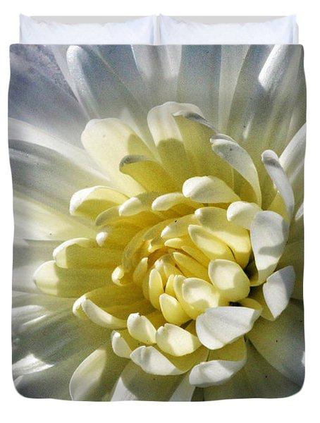 Chrysanthemum In Sunlight Duvet Cover