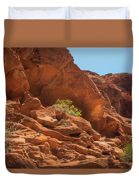 Chucka Walla And Desert Blooms Valley Of Fire Duvet Cover by Frank Wilson