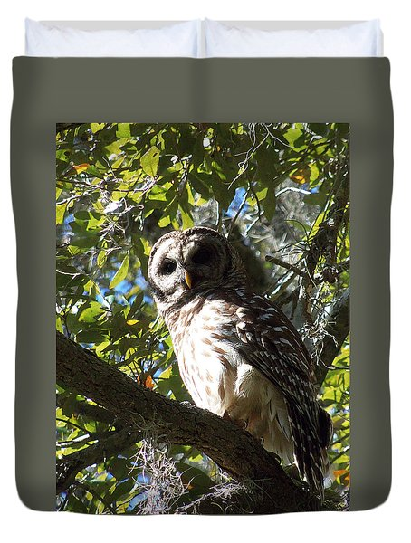 Circle B Bar Barred Owl 002 Duvet Cover