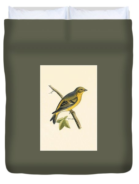 Citril Finch Duvet Cover by English School