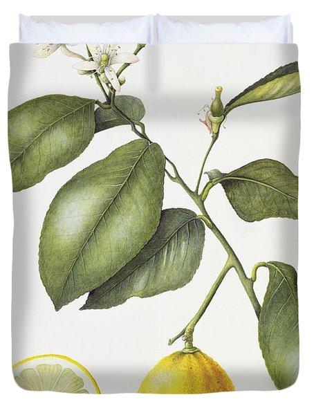 Citrus Bergamot Duvet Cover