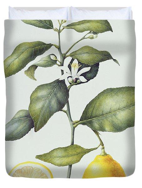 Citrus Lemon Duvet Cover