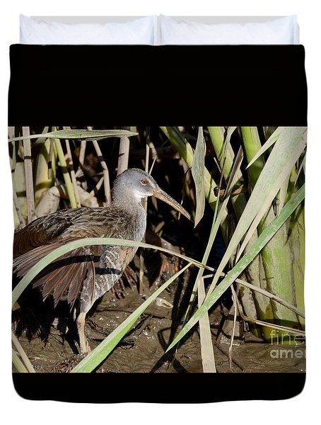 Duvet Cover featuring the photograph Clapper Rail  by Kathy Gibbons