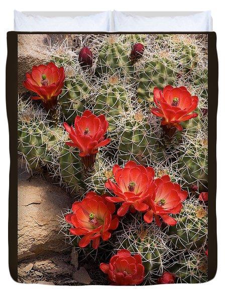 Claret Cup Cactus Duvet Cover