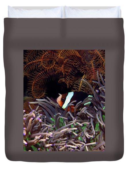 Clark's Anemonefish, Indonesia 2 Duvet Cover