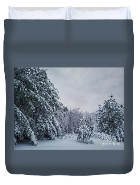 Classic Winter Scene In New England  Duvet Cover