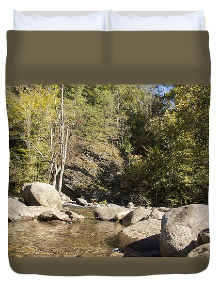 Clear Water Stream Duvet Cover by Ricky Dean
