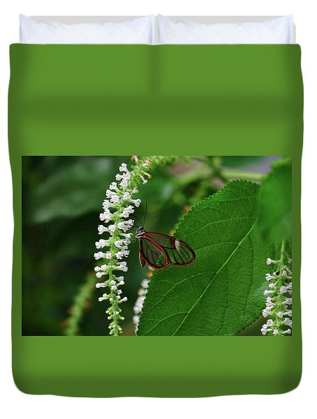 Clearwing Butterfly Duvet Cover by Ronda Ryan