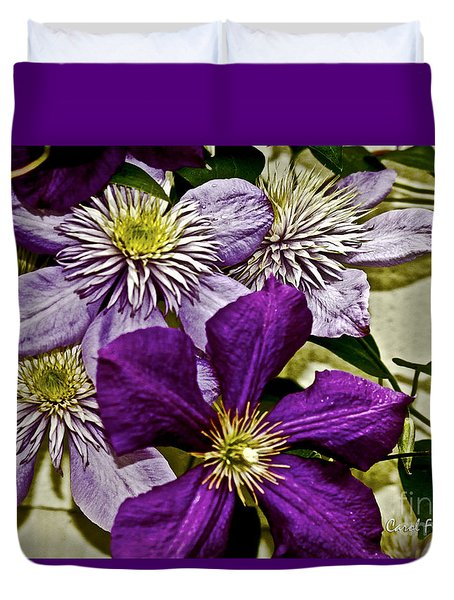 Purple Clematis Flower Vines Duvet Cover by Carol F Austin