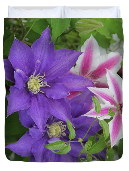 Clematis Purple And Pink White Duvet Cover