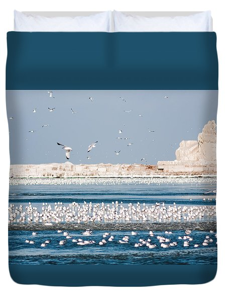 Cleveland Lighthouse In Ice  Duvet Cover
