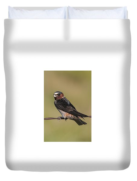 Duvet Cover featuring the photograph Cliff Swallow by Gary Lengyel