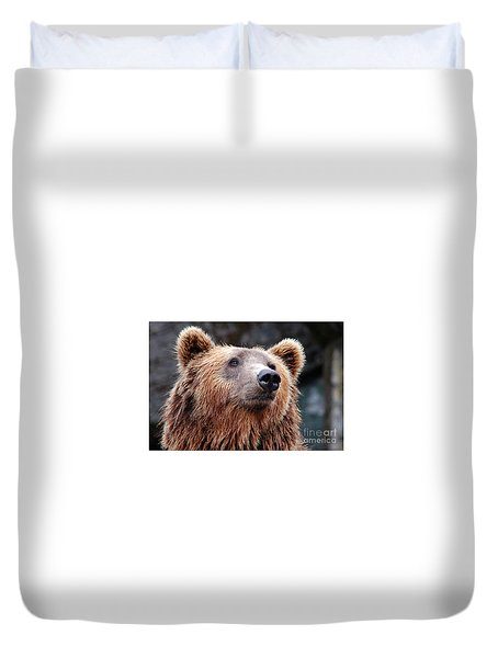 Duvet Cover featuring the photograph Close Up Bear by MGL Meiklejohn Graphics Licensing