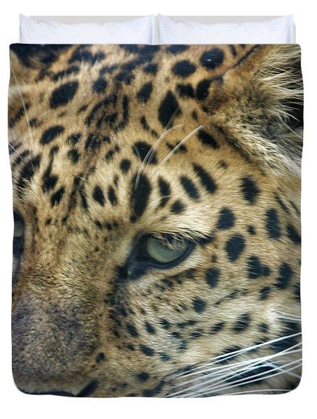 Close Up Of Leopard Duvet Cover