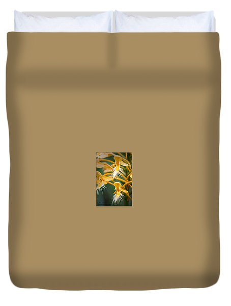 Duvet Cover featuring the photograph Close-up Of Yellow Fringed Orchid by Bob Decker