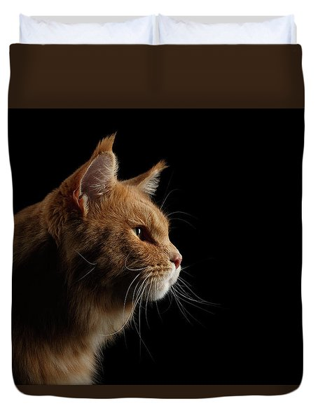 Close-up Portrait Ginger Maine Coon Cat Isolated On Black Background Duvet Cover