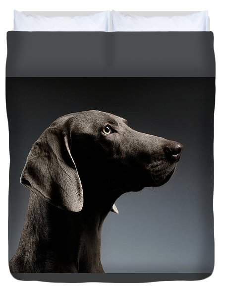 Close-up Portrait Weimaraner Dog In Profile View On White Gradient Duvet Cover
