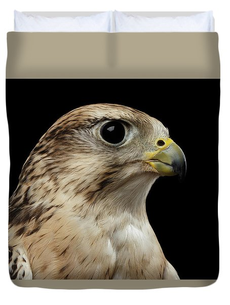 Close-up Saker Falcon, Falco Cherrug, Isolated On Black Background Duvet Cover by Sergey Taran
