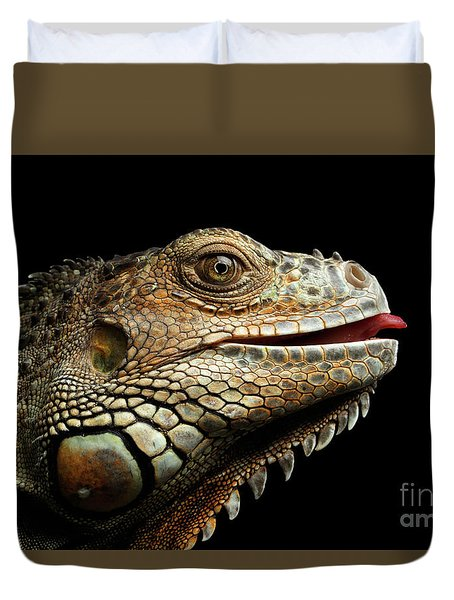Close-upgreen Iguana Isolated On Black Background Duvet Cover by Sergey Taran