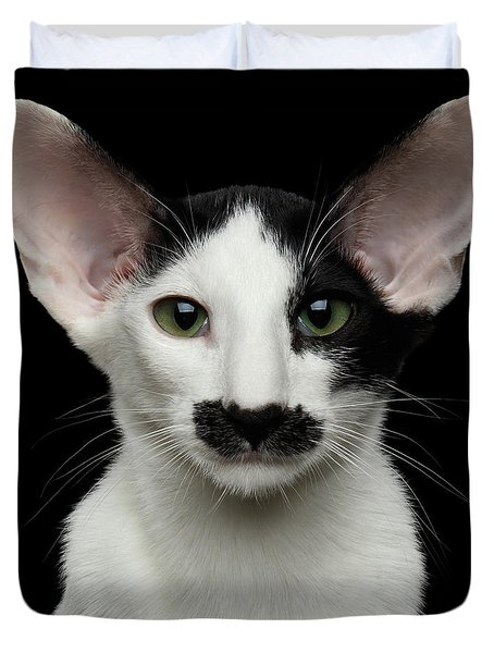 Closeup Funny Oriental Shorthair Looking At Camera Isolated, Bla Duvet Cover