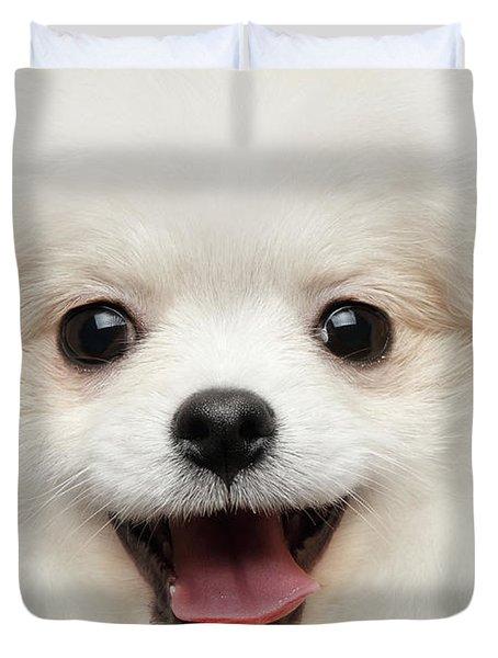 Closeup Furry Happiness White Pomeranian Spitz Dog Curious Smiling Duvet Cover