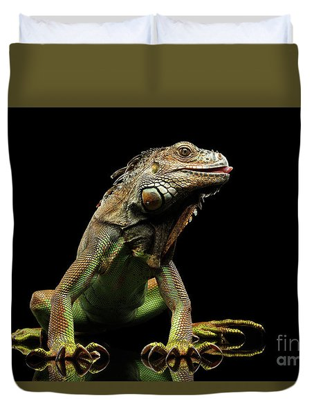 Closeup Green Iguana Isolated On Black Background Duvet Cover by Sergey Taran