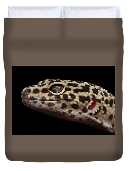 Closeup Head Of Leopard Gecko Eublepharis Macularius Isolated On Black Background Duvet Cover by Sergey Taran