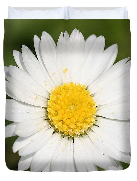 Closeup Of A Beautiful Yellow And White Daisy Flower Duvet Cover by Tracey Harrington-Simpson