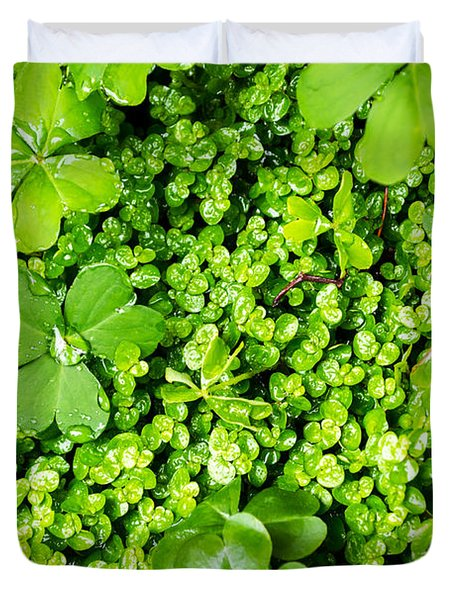 Lush Green Soothing Organic Sense Duvet Cover