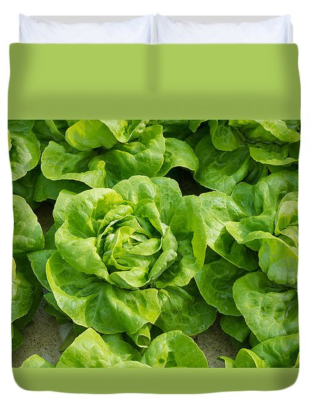 Duvet Cover featuring the photograph Closeup Of Lettuces by Hans Engbers