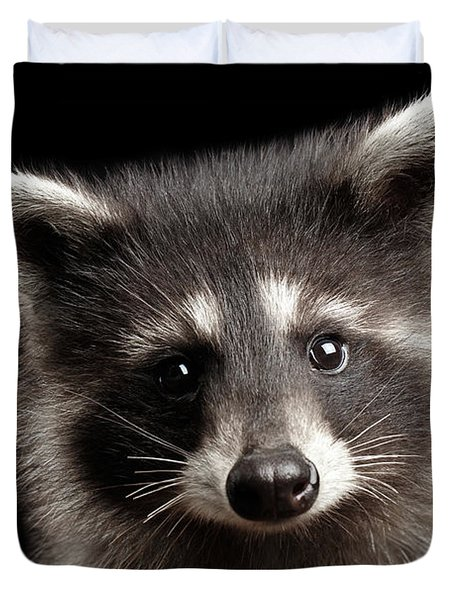 Closeup Portrait Cute Baby Raccoon Isolated On Black Background Duvet Cover
