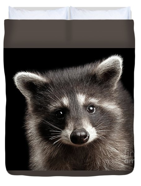 Closeup Portrait Cute Baby Raccoon Isolated On Black Background Duvet Cover by Sergey Taran