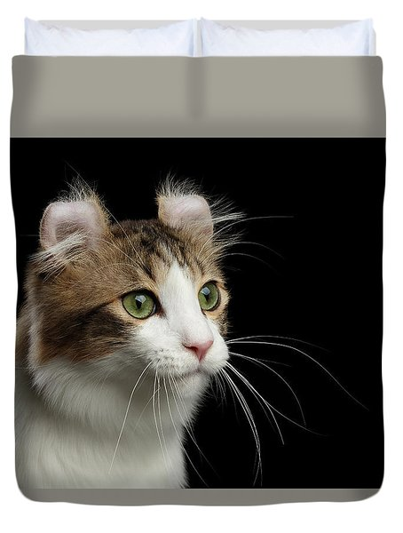 Closeup Portrait Of American Curl Cat On Black Isolated Background Duvet Cover