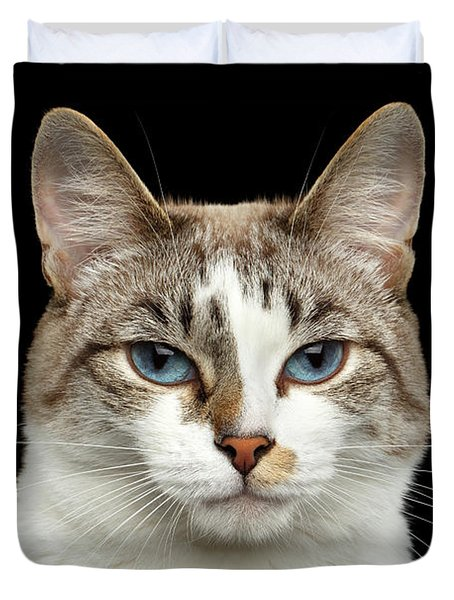 Closeup Portrait Of Face White Cat, Blue Eyes Isolated Black Background Duvet Cover