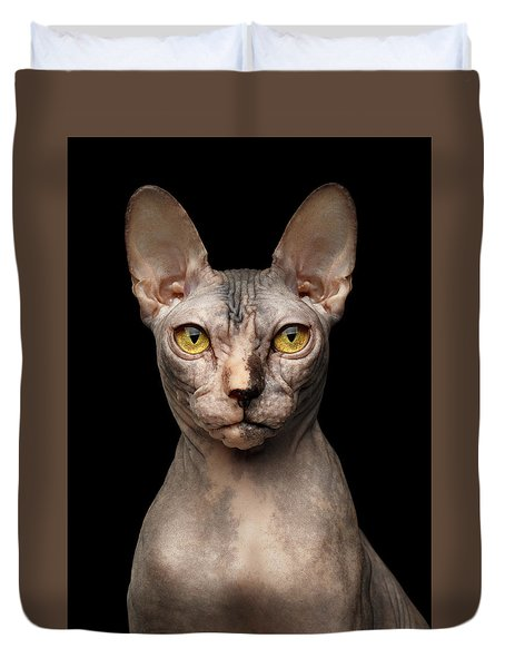 Closeup Portrait Of Grumpy Sphynx Cat, Front View, Black Isolate Duvet Cover
