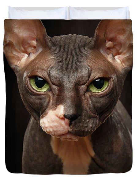 Closeup Portrait Of Grumpy Sphynx Cat Front View On Black  Duvet Cover
