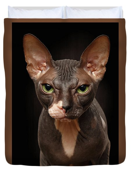 Closeup Portrait Of Grumpy Sphynx Cat Front View On Black  Duvet Cover by Sergey Taran