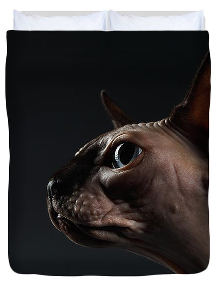 Closeup Portrait Of Sphynx Cat In Profile View On Black  Duvet Cover