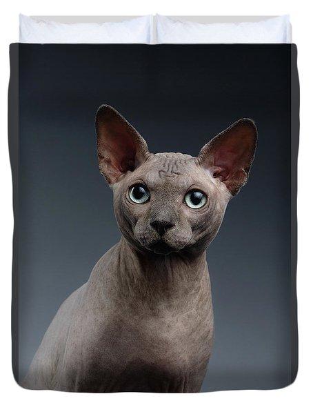 Closeup Portrait Of Sphynx Cat Looking In Camera On Dark  Duvet Cover