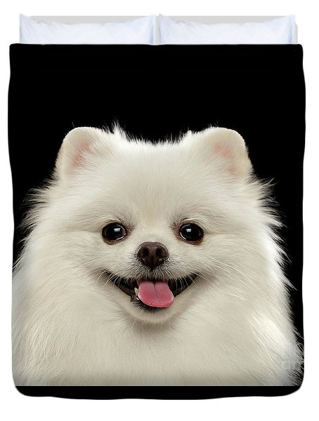 Closeup Portrait Of  White Spitz Dog On Black  Duvet Cover by Sergey Taran