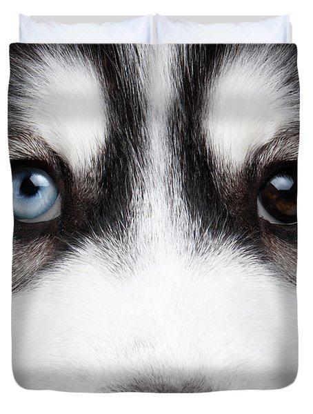 Closeup Siberian Husky Puppy Different Eyes Duvet Cover